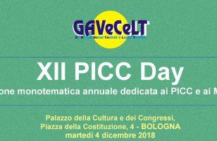 XII PICC Day – Bologna, 4 dicembre 2018